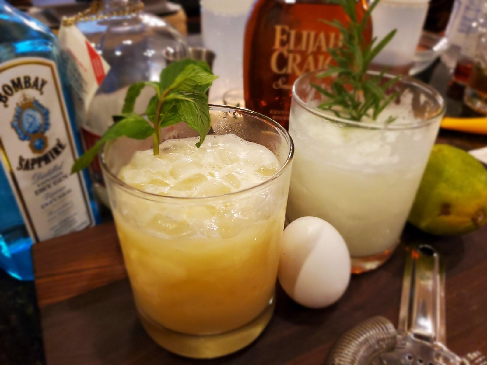 Gin_and_Bourbon_Fizz_4