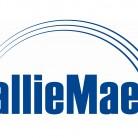 sallie mae banner