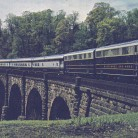 Columbian_at_Thomas_Viaduct