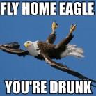drunk eagle