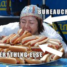 bearucrocy hot dog